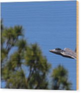 F22 Raptor Flying Low Wood Print