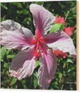 F5 Hibiscus Flower Hawaii Wood Print