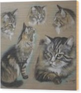 Faa Cat Collage Wood Print
