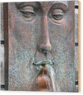 Face Fountain - Riviera Maya Mexico Wood Print