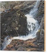 Face In The Falls Wood Print