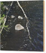Face In The River Wood Print