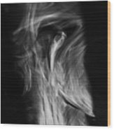 Faces In Smoke 1177 Wood Print