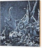 Facing The Enemy II Wood Print by Marc Garrido