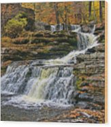 Factory Falls - Childs State Park Wood Print