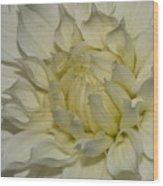 Fade To White Wood Print