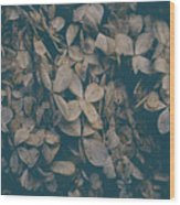Faded Flowers Wood Print