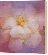 Fading Summer Flower Wood Print
