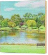 Fagan Park Wood Print