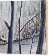 Fairfax Winter Wood Print