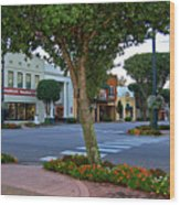 Fairhope Ave With Clock Wood Print