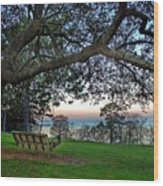 Fairhope Swing On The Bay Wood Print
