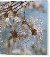 Fairy Flowers Wood Print