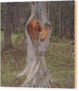 Fairy Portal Wood Print