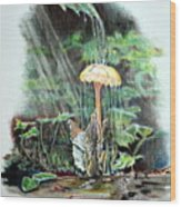 Fairy Shower Wood Print