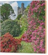 Fairy Tale Garden Wood Print