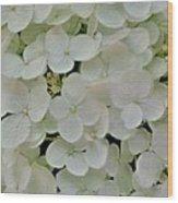 Fairy White Flowers Wood Print