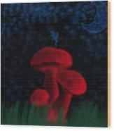 Fairyland Wood Print