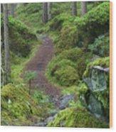 Fairytale Trail Wood Print
