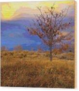 Fairytale Tree Wood Print