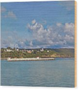 Fajardo Ferry Service To Culebra And Vieques Panorama Wood Print