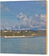 Fajardo Ferry Service To Culebra And Vieques Panorama Wood Print