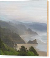 Falcon And Silver Point At Oregon Coast Wood Print