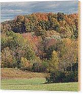 Fall '10 Wood Print