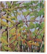 Fall 2 Wood Print