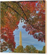 Fall 2015 Washington Dc Wood Print