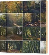 Fall - A Montage Wood Print
