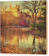 Fall Afternoon In Central Park Wood Print