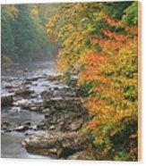 Fall Along The Cranberry River Wood Print by Thomas R Fletcher