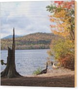 Fall Arrival Wood Print