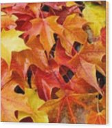 Fall Art Prints Red Orange Yellow Autumn Leaves Baslee Troutman Wood Print
