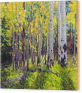 Fall Aspen Forest Wood Print by Gary Kim