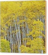 Fall Aspen Meadow Wood Print