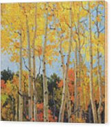 Fall Aspen Santa Fe Wood Print by Gary Kim