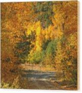 Fall Aspen Trail Wood Print