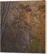 Fall At Amicalola Falls Wood Print