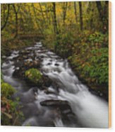 Fall At Bridal Veil Creek Wood Print