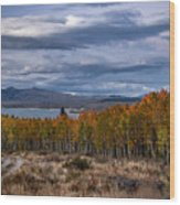 Fall At Hilton Creek Wood Print