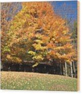 Fall At Kanuga Wood Print