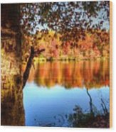 Fall At Lake Wood Print