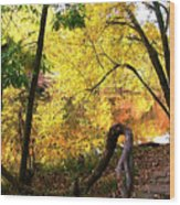 Fall At Lincoln Lake	 Wood Print