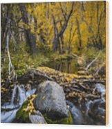 Fall At Mcgee Creek Wood Print