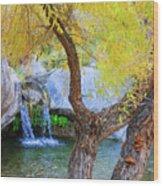 Fall At Murray Falls I Wood Print