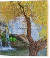 Fall At Murray Falls II Wood Print