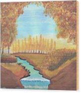 Fall At The Meadows Wood Print