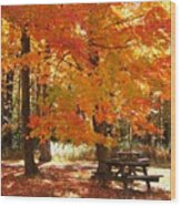 Fall At The Park Wood Print